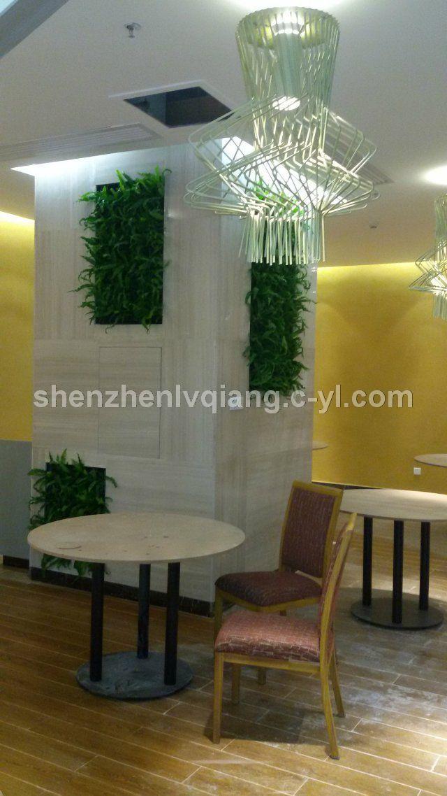 餐厅室内绿化