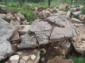 山东龟纹石